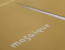MOSAIQUE brochure